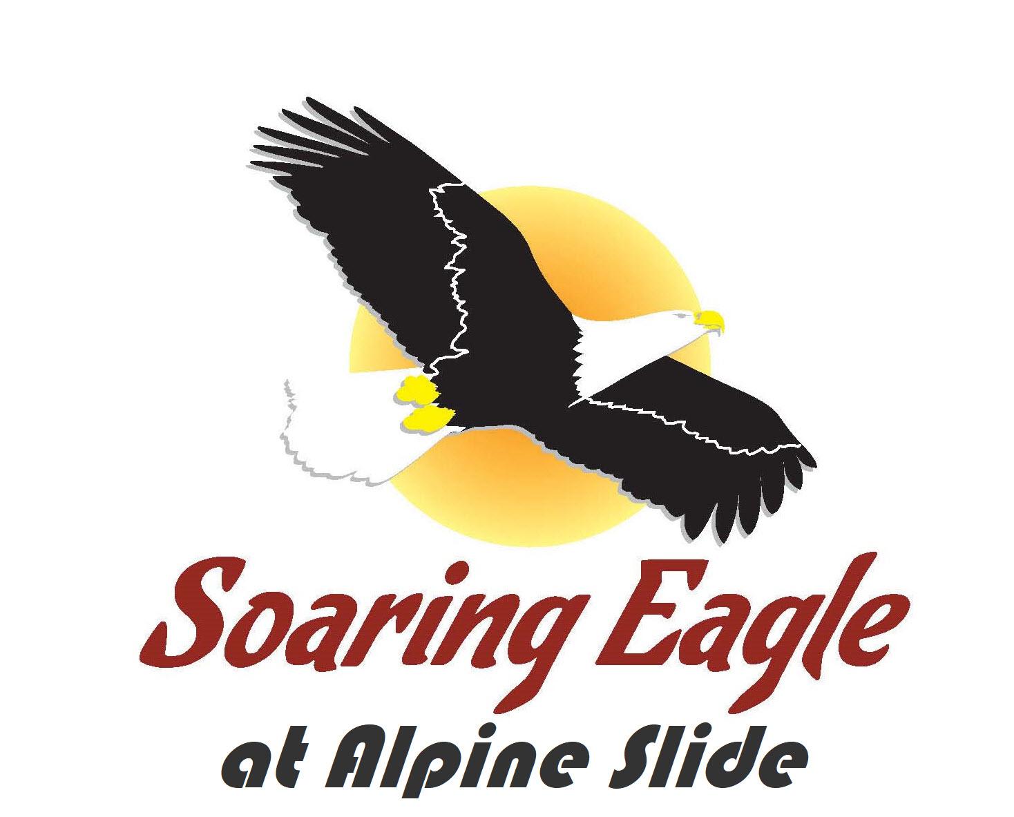 Big Bear Bald Eagle Nest | Friends of Big Bear Valley